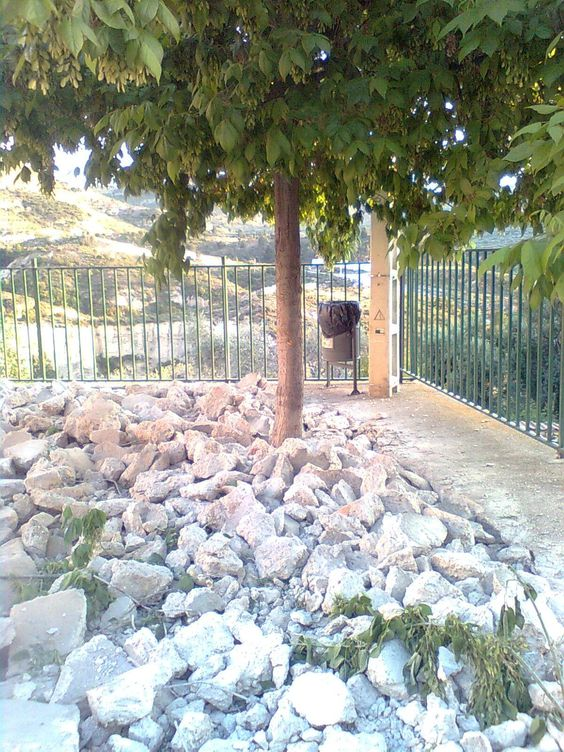 levantando el cemento de la plaza del polideportivo