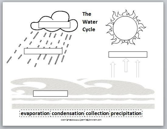 Worksheets The Water Cycle Worksheets water cycle printable worksheet worksheetsworksheets bilingual resources images and pictures science the
