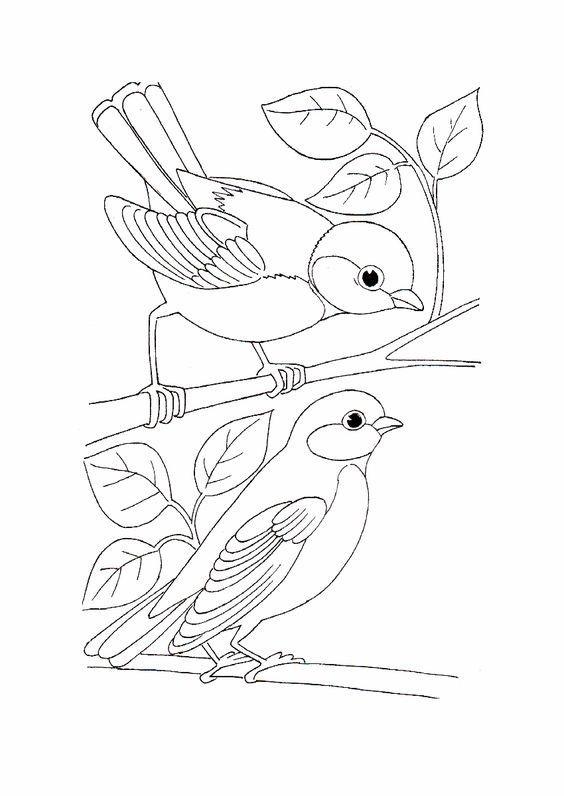 Pin De Alice Greible En Ideas De Bordado Bordados De Aves Animales Que Vuelan Patrones De Bordado