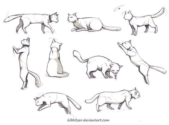 cat poses drawing | Publicado por Lovely-Lina en 5:01 No hay comentarios: