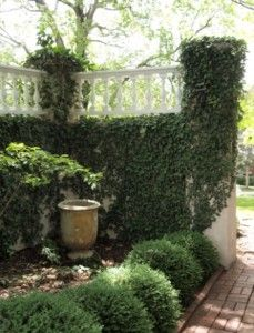 Amp up Your Home's Curb Appeal - Nell Hills