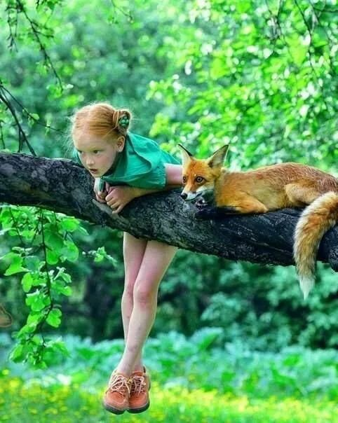 Electric green leafy trees and grass, red haired girl, and red fox on branch. #vibrant #brightgreen #redfox #redhair