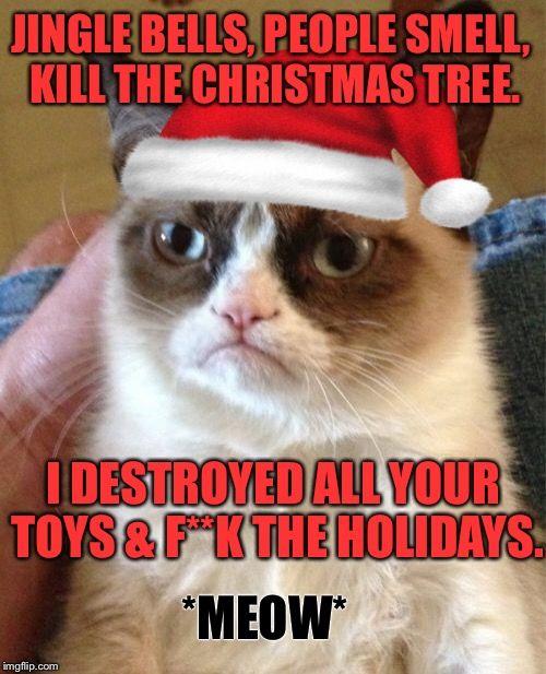 Funny Grumpy Cat Christmas Memes.Grumpy Cat Meme Jingle Bells People Smell Kill The
