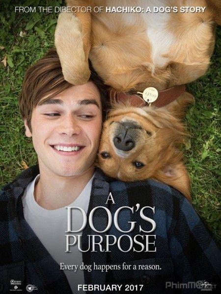 Phim Mục Đích Sống Của Một Chú Chó