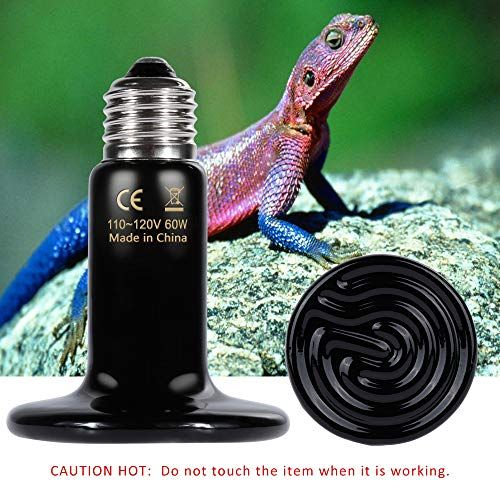 Zacro Reptile Heat Lamp 100w With One Digital Thermometer