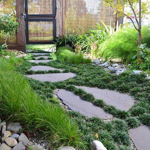 Mark Bickerdike S Garden In Buninyong A Great Example Of How A Designer Can Use Space Well And Create Depth Thr Garden Design Japanese Garden Botanical Gardens