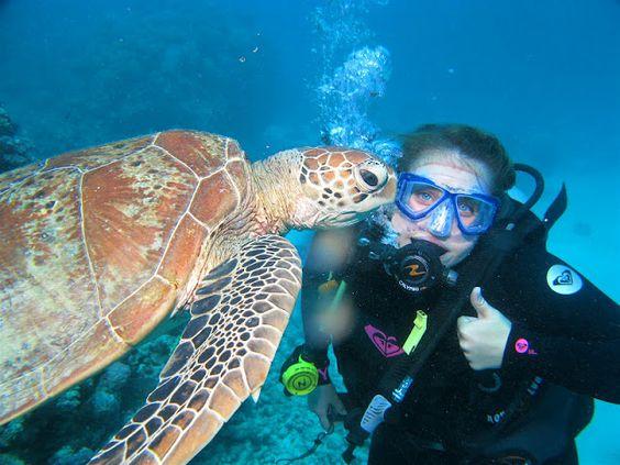 Scuba dive the Great Barrier Reef in Cairns, Queensland, Australia