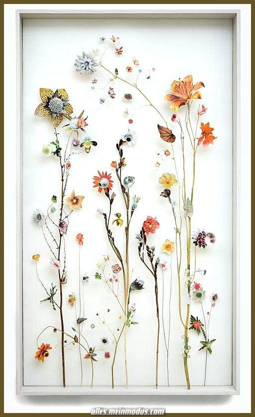 N\A Nat/ürlich getrocknete gepresste Blumen DIY Kunst Blumendekor Sammlung Geschenk Blattwerk Florale Kunst f/ür DIY Kerze Harz Schmuck Nagel Anh/änger Handwerk