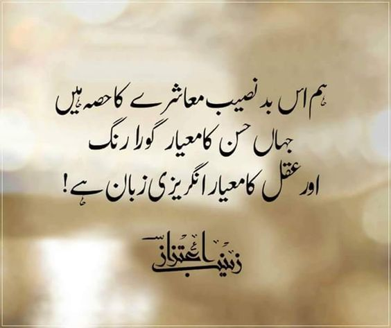 Warrior Life Meaning In Urdu: Hum Us Bad-naseeb Muaashre Ka Hissa Hai..jaha Husn Ka