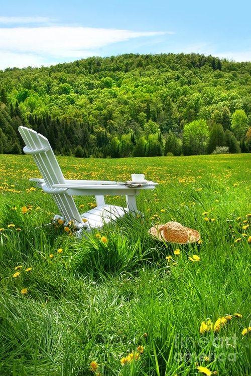 Soñar sentada en el campo...