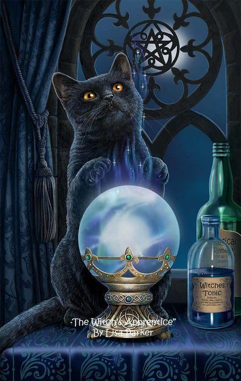 THE WITCH'S APPRENTICE BY LISA PARKER | Black cat art, Cat art, Fantasy art