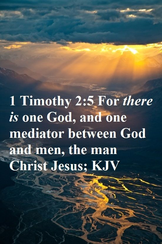 """1 Timothy 2:5 ~ """"For there is one God, and one Mediator between God and men, the Man Christ Jesus;"""" [KJV] Amen"""