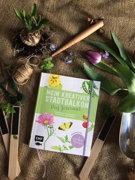 Mein Kreativer Stadtbalkon - Das Journal (handsigniert ... Pflege Von Chrysanthemen Zucht Andere Ideen