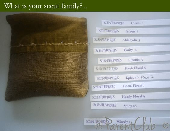 What is your scent family