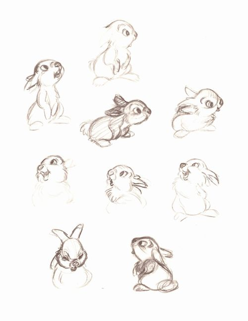 Gallery For gt Thumper Drawing Tumblr