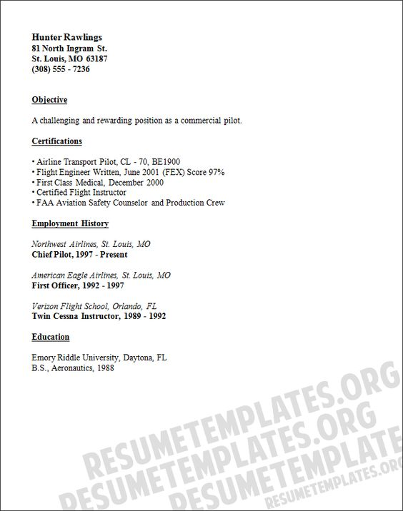 Airline pilot CV sample CV Pinterest Sample resume, Pilot - airline ticketing agent sample resume