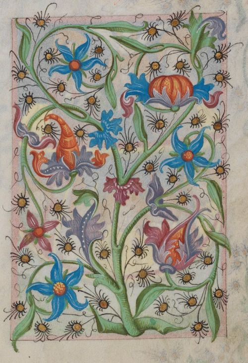 Floral decorative page from a Medieval Manuscript 1486  (Waldburg-Gebetbuch, WLB Stuttgart, Cod. brev. 12, fol. 61r).  http://nbn-resolving.de/urn:nbn:de:bsz:24-digibib-bsz3499422857  Wikimedia.: