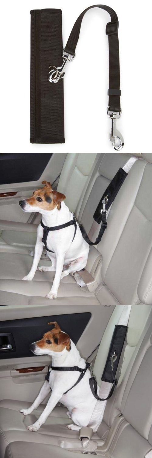 Guardian Gear Polyester Ride Right Seat Belt Connectors, Black - Now you can turn any dog harness into a travel harness. Innovative seat belt connector wraps around a seatbelt and features a secure clip that attaches to dog's harness for safe car travel. This seat ... - Vehicle Harnesses - Pet Supplies - $8.50