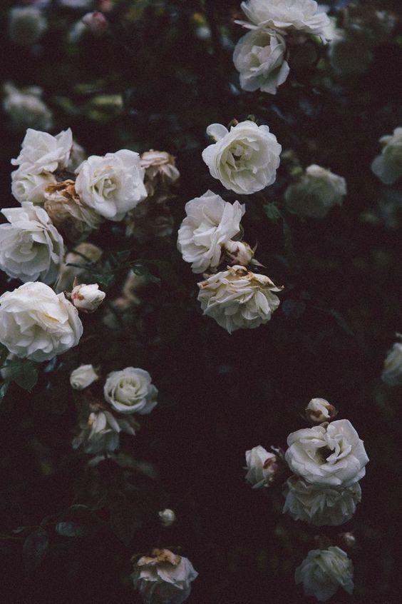 Aesthetic Black Floral Pinterest Wallpapers
