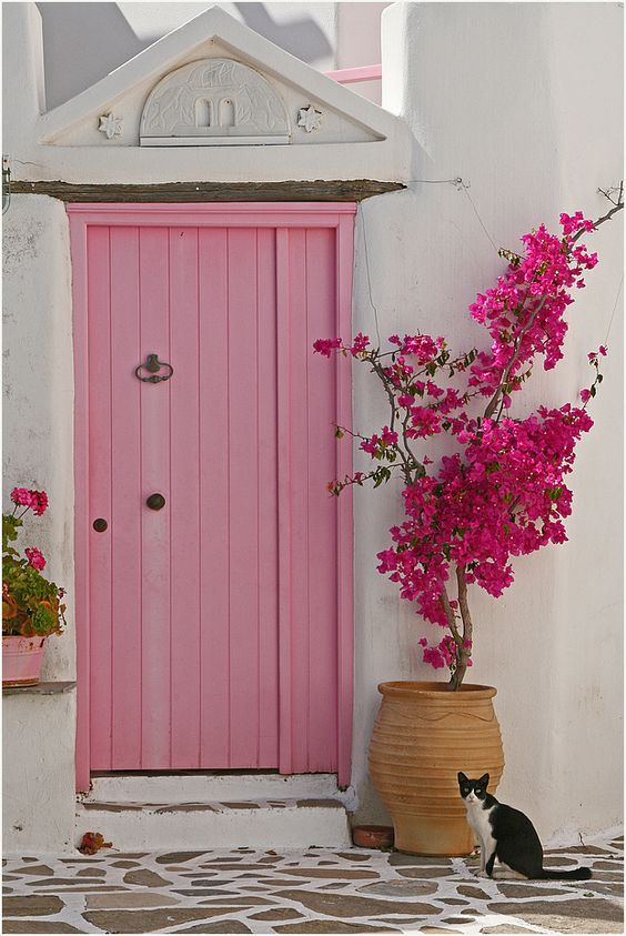 wecoming picturesque stone house with pink door and blooming bougamvilea