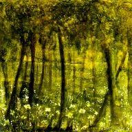 Waldseemystik Original Acrylarbeit 2013 (mit Rahmen 40x40)Bäume, Waldsee, Mystik, verzaubert, Zauberwald, Waldsee, Schönheit