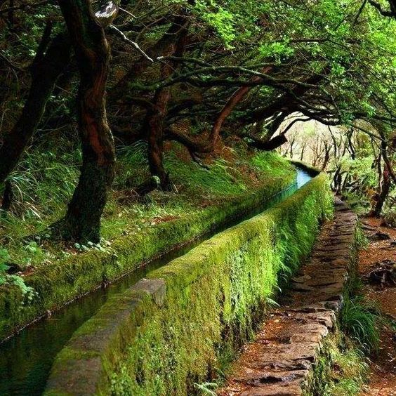 water path in Madeira, portugal
