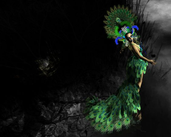 . . . peacock's screaming eye . . .