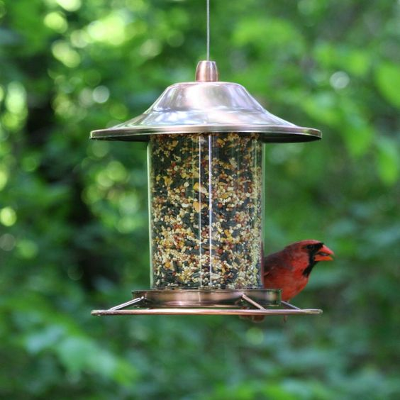 Panorama Bird Feeder, Copper Hanging Perch Garden Seed Squirrel Perky-Pet  #BirdFeeder