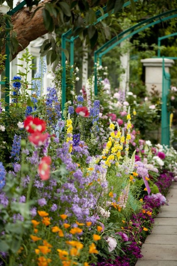 Monet used masses of flowers in bold or contrasting colors for impact. Tall flowers were allowed to soar above underplantings. Image courtesy of The New York Botanical Garden.