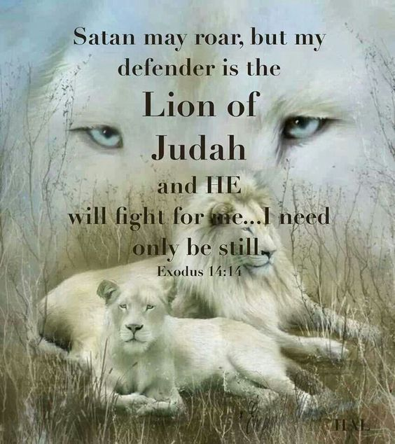 Lion of Judah: