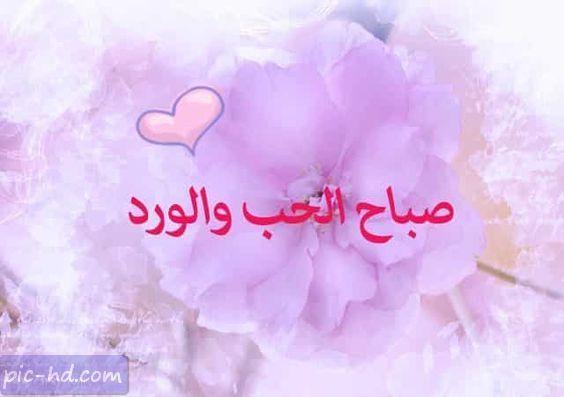 صور صباح الحب صور صباحية رومانسية للحبيب والمتزوجين Good Morning Love Morning Love Good Morning