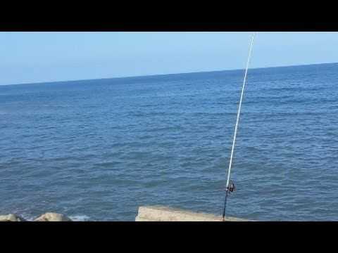 Fishing Method Surfcastin مباشرة من المصيد Youtube Ceiling Lights Pendant Light Light