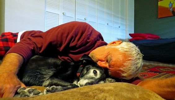 Traduit d'un article original en anglais de Bob Starkey. La plupart des gens qui perdent un chien vous le diront : c'est tout aussi éprouvant que de perdre un enfant. Mais en réalité, c'est même bien plus compliqué que ça. Car la plupart des parents finiront leurs jours sans jamais perdre d'enfant. Et lorsque le