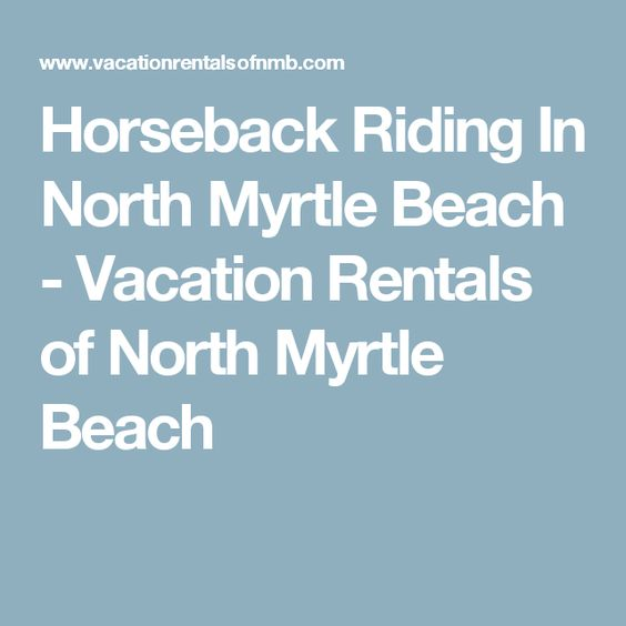 Horseback Riding In North Myrtle Beach - Vacation Rentals of North Myrtle Beach
