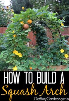 Spring is coming fast! If you're looking for a fun and easy DIY project, add beauty to your vegetable garden with a squash arch.  Check out my squash arch and get the plans to build your own here... | GetBusyGardening.com