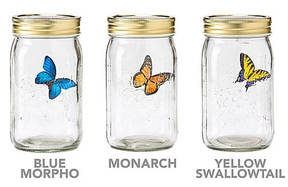 The electronic butterfly in a jar... the perfect way to add some color to your desk! #desk #gadgets