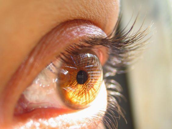 """Blog de @evacolladoduran: El ojo que todo lo ve… Nethunters  """"Sin saberlo, el """"nethunter"""" empezará a formar parte de tu vida en la red, y te acompañará sin que te des cuenta…"""""""