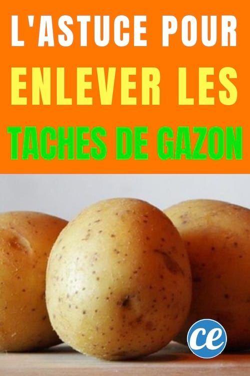 L Ingredient Surprise Pour Enlever Les Taches De Gazon Sur Un Vetement Tache Gazon Enlever
