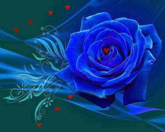 rosa-azul:
