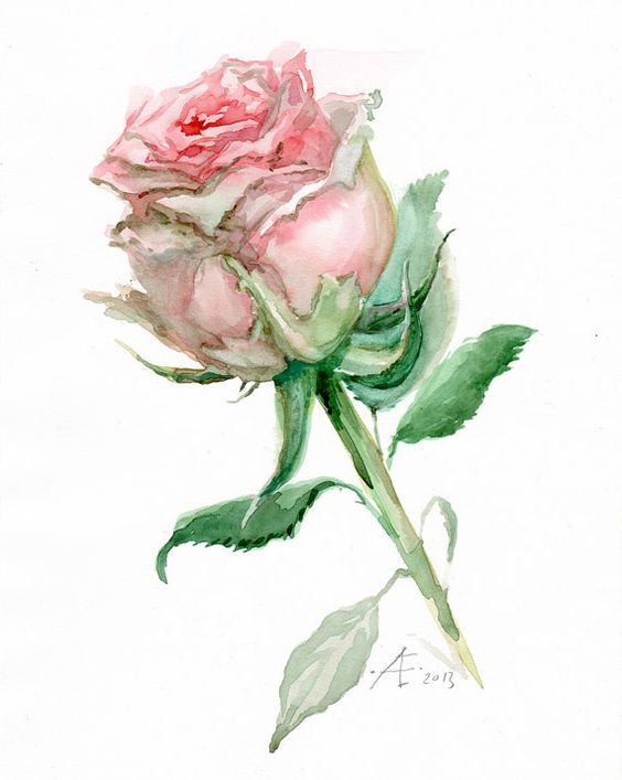 Hey, I found this really awesome Etsy listing at https://www.etsy.com/listing/178456956/rose-painting-pink-flower-fine-art-print