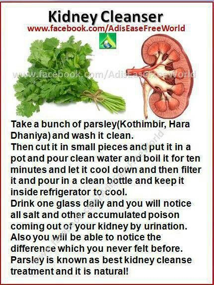 Kidney cleanse. THIS NEEDS CHECKING OUT BEFORE USING AS A 'CURE-ALL' - CURLEYTOP1.
