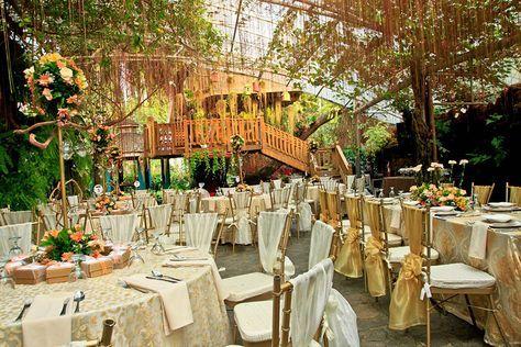 Hotels Near Blue Gardens Quezon City