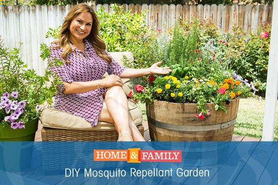 Gardens home and read more on pinterest Channel 7 home and garden
