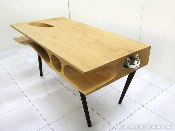 CATable, a work desk that caters for humans and their cats.