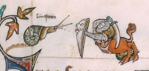 BLL_Add49622_f179r_d On f. 179r, upper marginalia, the (dextral) snail is confronting a hybrid of a lion with a knight. The knight has his scimitar ready for attack, his lion-head shield in front of him. Very interestingly, above the snail is a text which reminded me of the French word 'limaçons'; in the end it turned out to be an Anglo-Norman word for snail ('limaceoun') [2]. It remains a bit unsure whether this was used in those days for sea snails, land snails, or both: