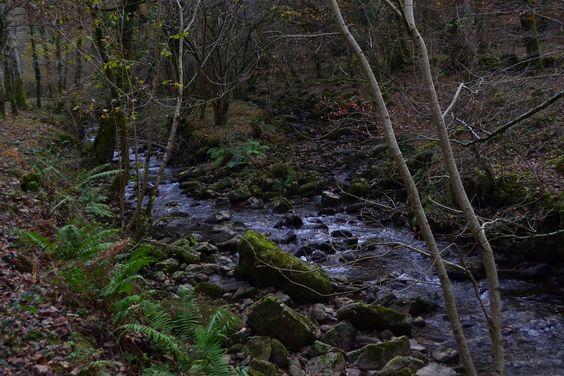 ruta de los puentes, saja, Cantabria, Spain