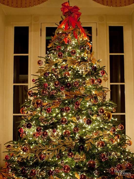 Repurpose Your Christmas Tree In Your Yard Christmas Decorations Christmas Lights Christmas Tree