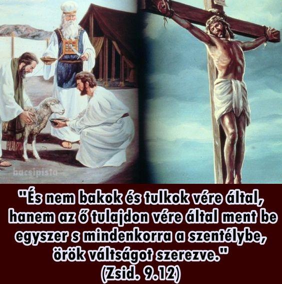 """""""És nem bakok és tulkok vére által, hanem az ő tulajdon vére által ment be egyszer s mindenkorra a szentélybe, örök váltságot szerezve."""" (Zsid. 9.12)"""