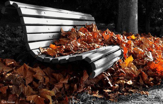 Autumn waves