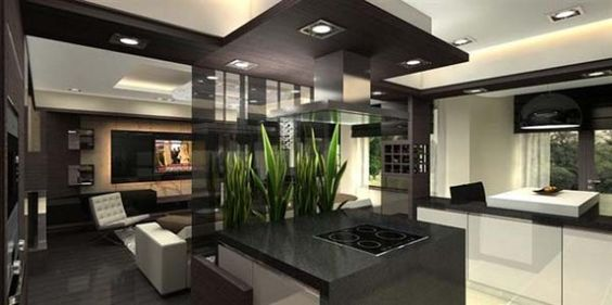 Apartment Kitchen And Living Room apartments. excellent small living room interior design ideas for